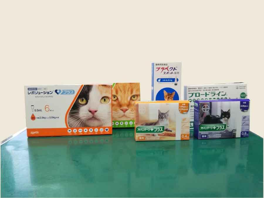ネコちゃん用駆除剤