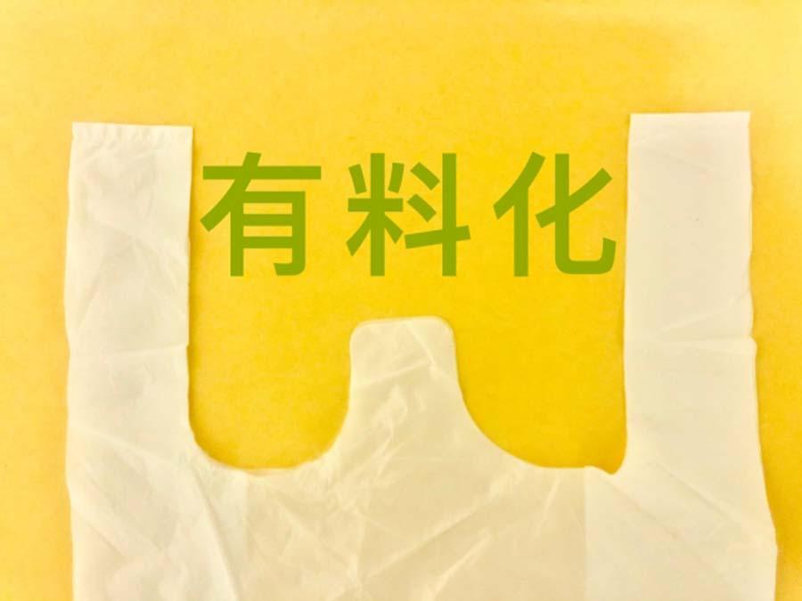 エコバッグプレゼントイメージ画像
